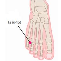 Gallbladder Meridian(GB) and Acu points - A O  Oriental Healing
