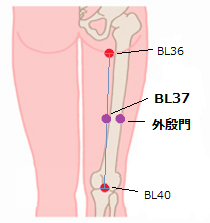 Acupuncture Points for BPH6