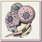 胆道癌(胆嚢癌・胆管癌)