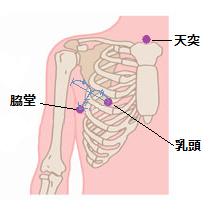 肺炎ツボ1