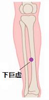 膀胱炎ツボ7