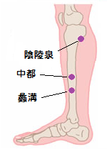 肝臓のツボ1