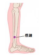 膀胱炎ツボ6