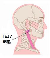 歯肉炎ツボ3